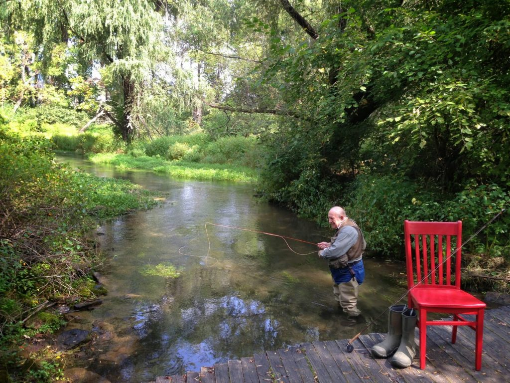 Older man fly fishing in a stream surrounded by lush greenery