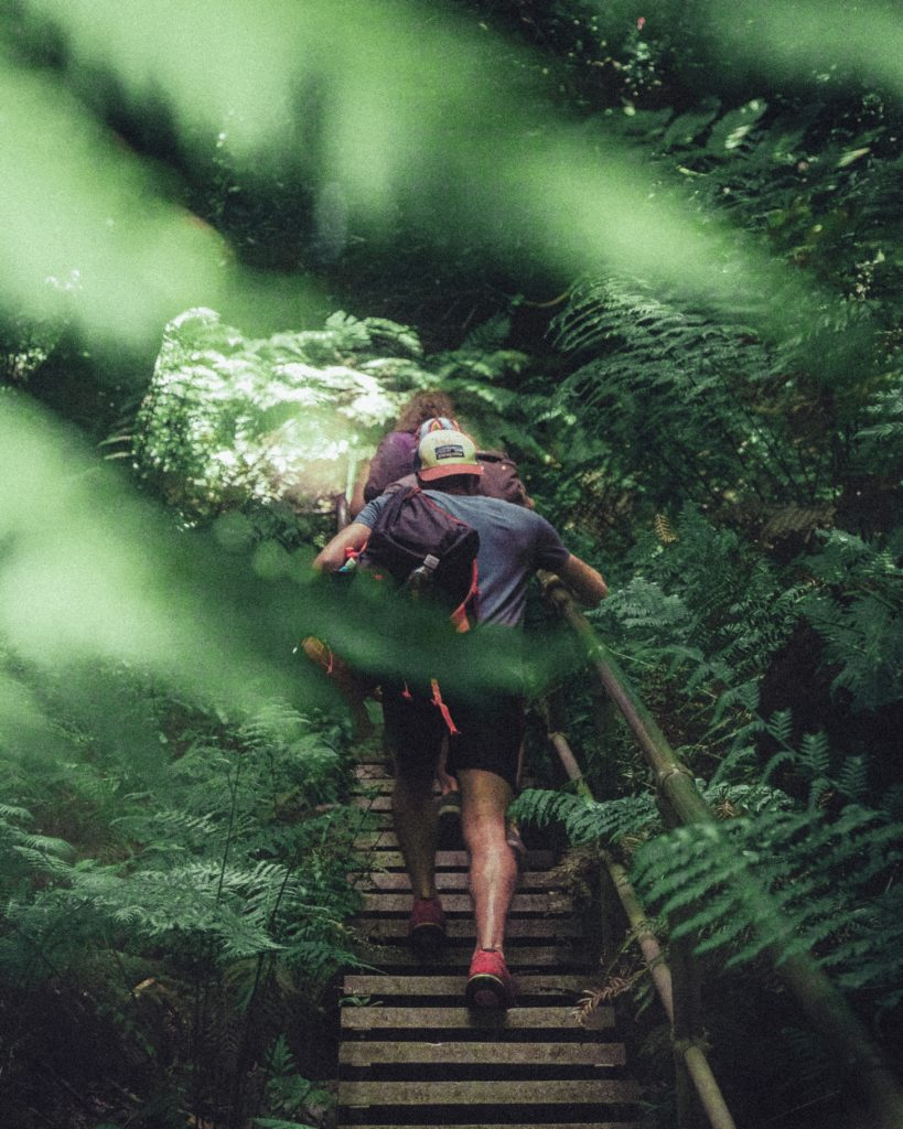 man hiking up wooden stairs in the forest