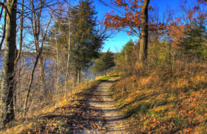 Hiking trail along a mountain side in the fall with pines, bare trees and colorful leaves on the ground